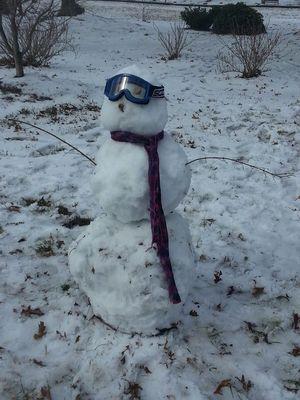 2-Snowman Pic